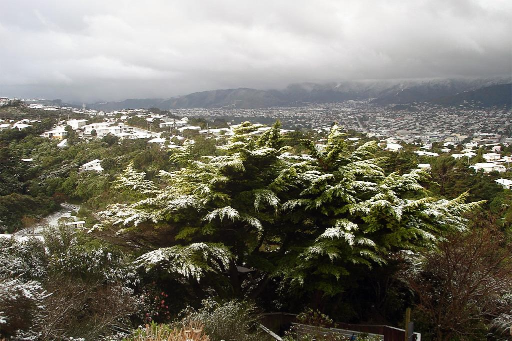 A view of Lower Hutt on Sunday after snowfall.