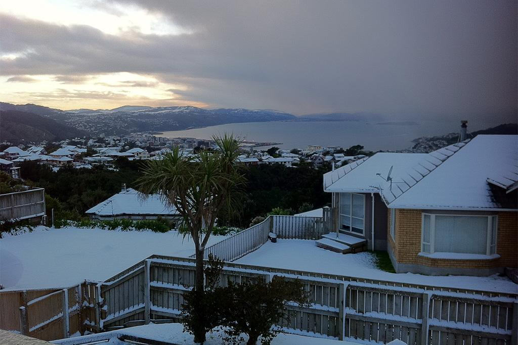 A view of Wellington Harbour on Tuesday morning from Brooklyn.