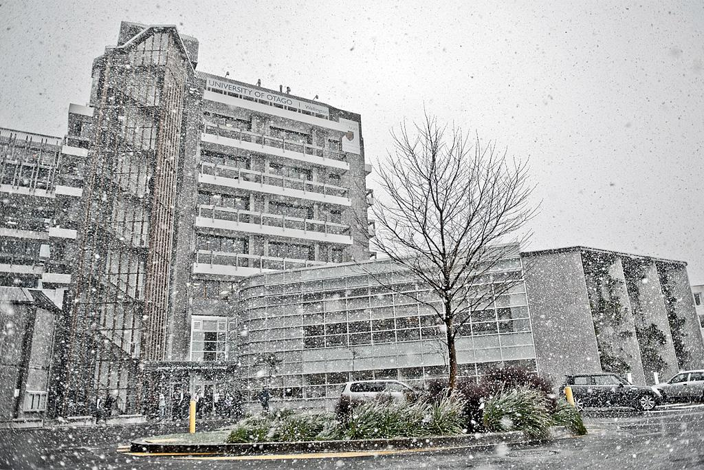 The University of Otago building at Wellington Hospital in Newtown during a snowstorm.