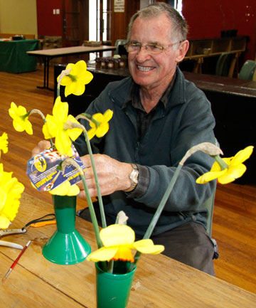 Palmerston North's Brian Mackenzie setting up for the 85th North Island National Daffodil Society Show in Hawera being held at the weekend.