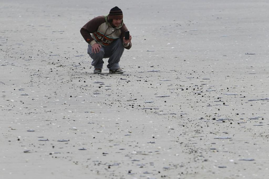 SCATTERED: Globules of oil now washing up on Mt Manganui beach.
