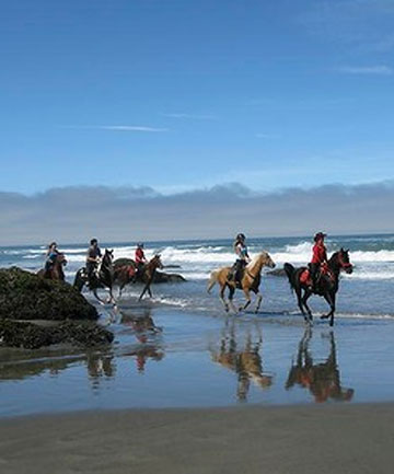WAVE GOODBYE: Riding on the beach near Fort Bragg.