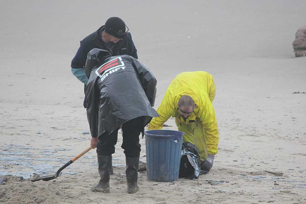 CLEAN-UP: Volunteers collecting oil sludge from the beach at Papamoa