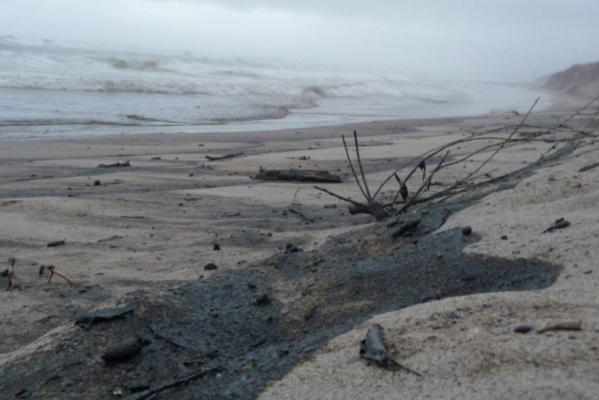 Oil residues on Omanu beach at the 5 1/2 km beach entry point, Tuesday morning.