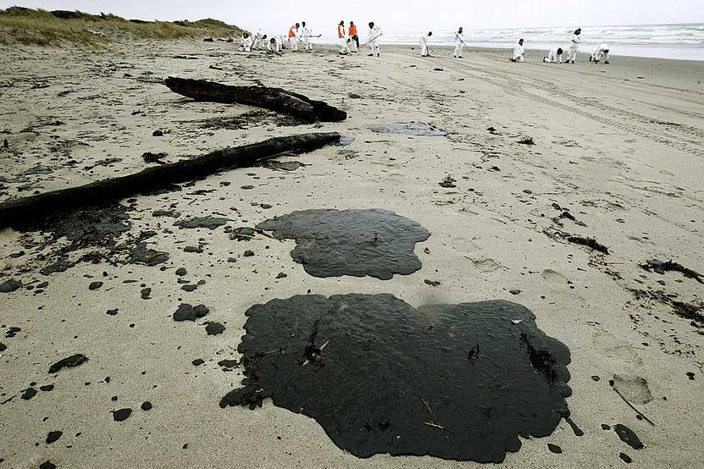CLEAN-UP: Papamoa beach is covered with oil sludge