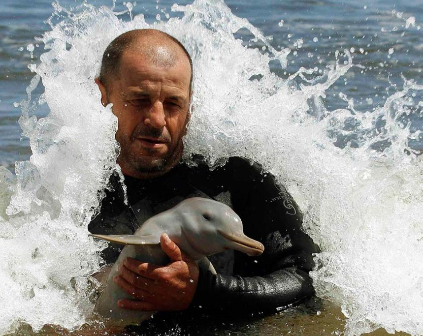 The head of the NGO SOS Rescate Fauna Marina, Richard Tesore, with the rescued baby La Plata dolphin.