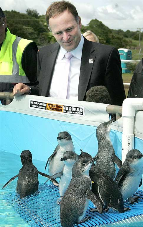 PM John Key visits the Bird recovery Centre where he watches Little blue Penguins that have been cleaned of oil.
