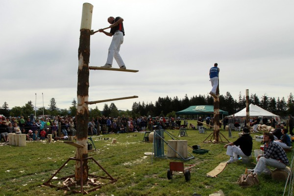 Andrew Cox of Geraldine in the wood chopping jigger board competition.