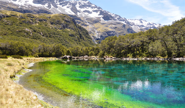 how to clean a lake naturally