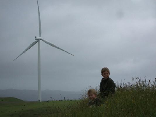 WIND POWER: Rachel Carson took this picture of her sons Levi and Dan after they spent two hours climbing up to the Te Uku wind farm