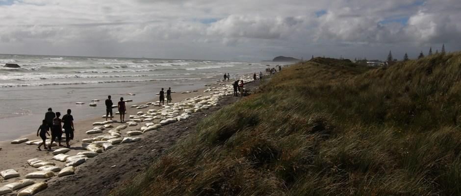 People walking besides the cargo washed up along the Waihi beach.