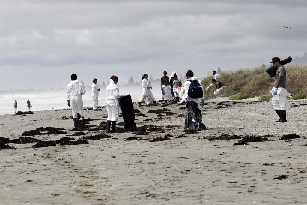 Clean-up teams in action at Waihi Beach, clearing debris from the sinking ship Rena.