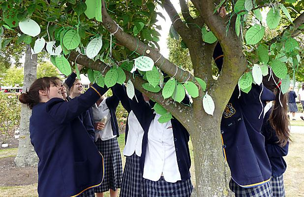 TREE OF HOPE: Rangi Ruru students pin their thoughts and hopes to commemorate the February anniversary.