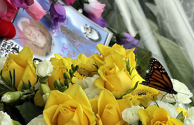 """TRIBUTE: Monarch butterflies were released during today's Civic Memorial Service which many attendees said was a """"nice touch""""."""