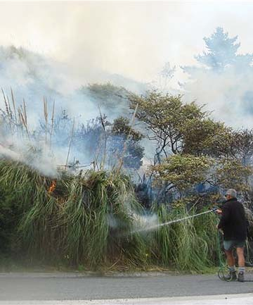 SCRUB FIRE: This scrub fire at Omapare in December last year was quickly contained.