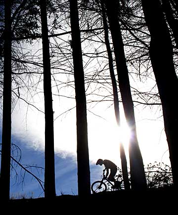 AIR UP HERE: A mountain bike racer tackles the Ben Lomond Forest course high above Queenstown during last year's Dirtmasters Downhill event, part of the bike festival.