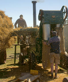 AT WORK: Club members Kevin Deam and Daniel Crossen cut chaff at a public display.
