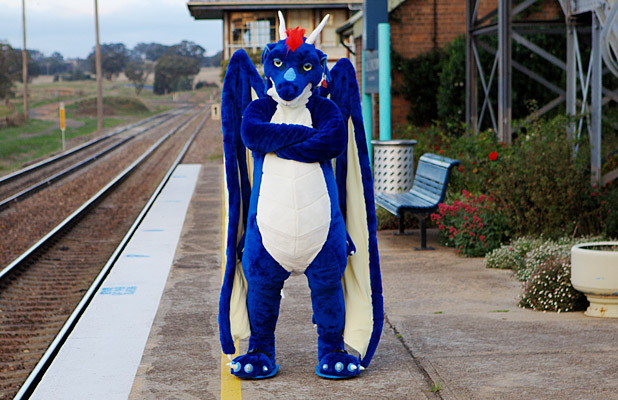 FURRY WORK: Australian-based Moskintia the dragon says professional fursuiters like himself are serious about what they do.