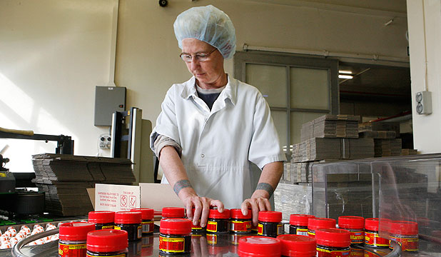 HAPPIER TIMES: Jacqui Lewis packs Marmite off the assembly line at Sanitarium in Christchurch before the plant was damaged and production ceased.