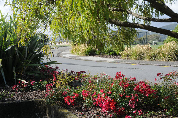 Future look: This display at the Petone Memorial Gardens, with ``scarlet'' carpet roses as groundcover, flax, toi-toi and a kowhai tree may be typical of the new approach for street gardens in Lower Hutt.