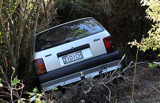 Car hidden in thick bush