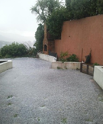 hail in wellington
