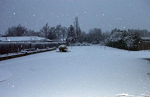 SNOWGLOBE: Ashburton resident Christine Richards has photographed the large flakes as they fall.