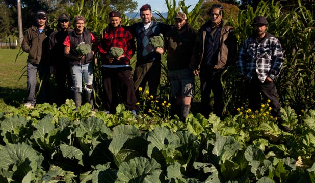 HARVEST TIME: NorthTec students and tutor Justin Blaikie, fifth from left, share some of the fruits of their labour at a Kaikohe student garden.