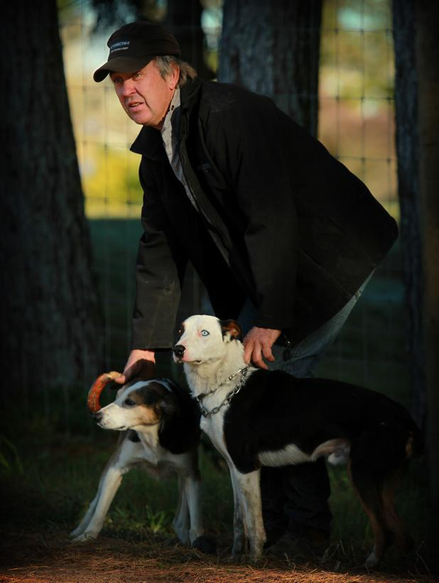"Graeme Strawbridge with dogs, Rock and ""Blue"" with a blue eye  at the Sheepdog trials on day 2 of Fieldays.