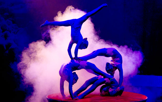 SHOW TIME: A circus festival is one of the suggestions for putting Wellington on the map.