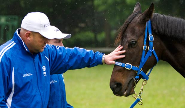 Peter Moody and Black Caviar