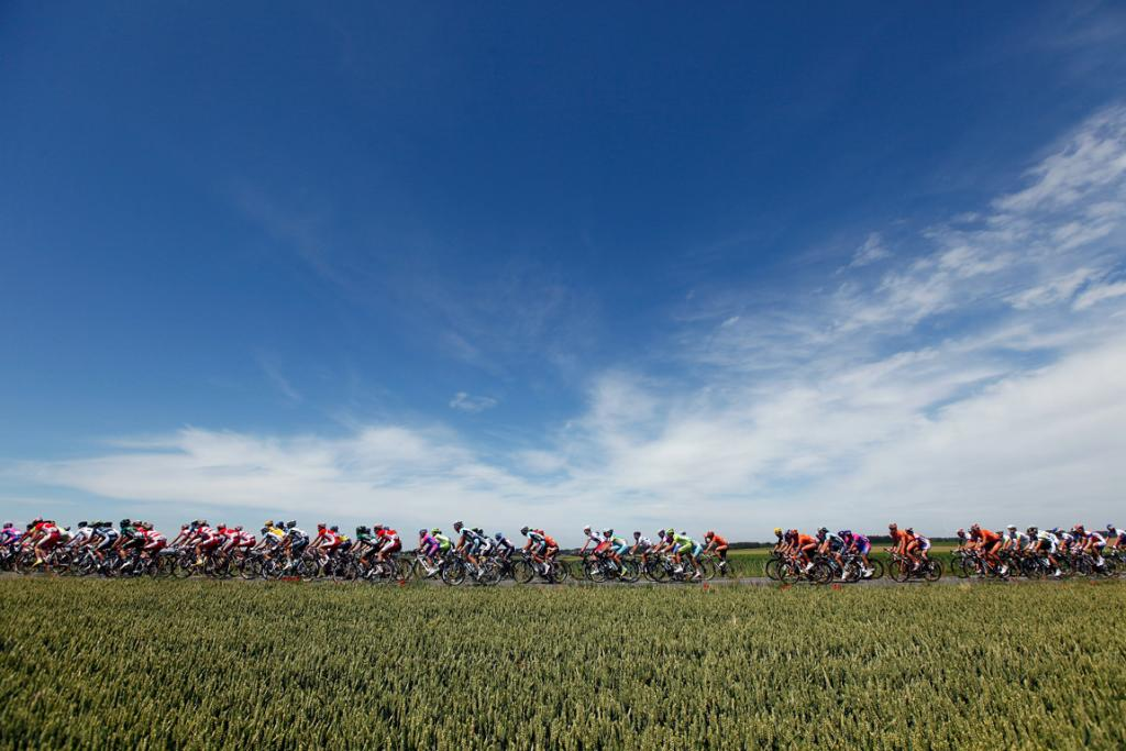 The peloton passes through a wheat field during stage two.