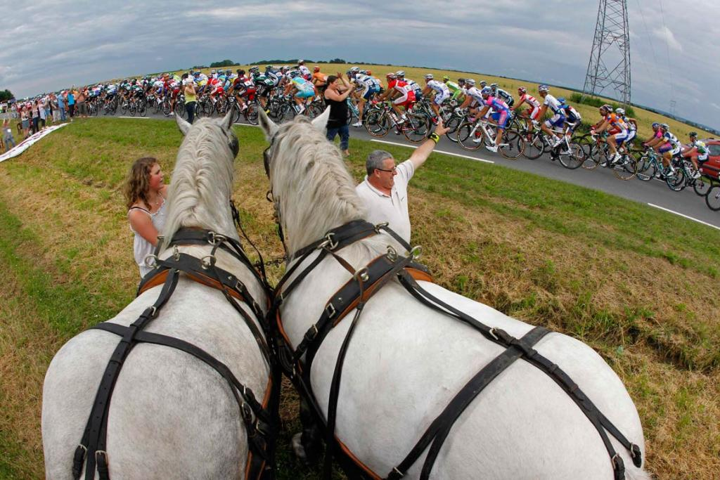 Riders cycle past spectators with horses during the fifth stage from Rouen to Saint-Quentin.