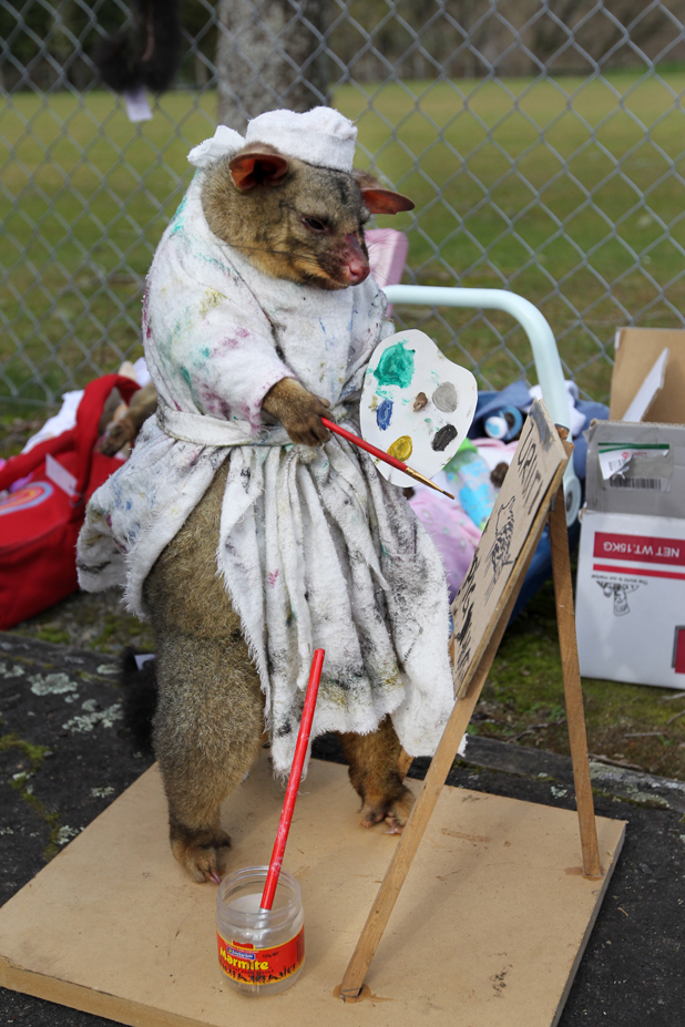 Pimped-up possums
