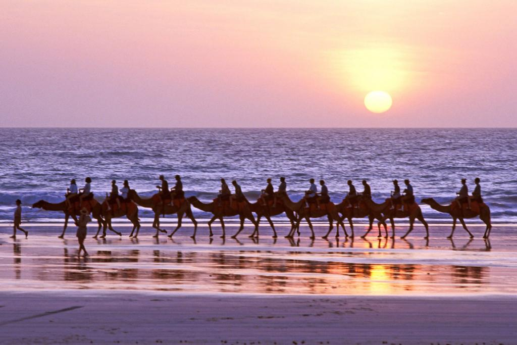 Broome_Gallery1