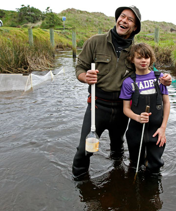 NEW SEASON: Joshua Cooper-Taepa, 11, and dad Pera Taepa spent the first day of the whitebait season chasing the delicacy at Waimea Stream near Waikanae Beach.