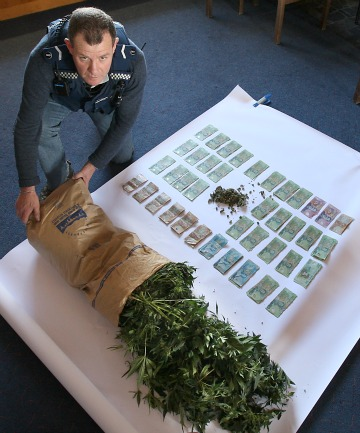 POTTED: Senior Constable David Ross with some of the cannabis plants and money recovered from search warrants at a Timaru 'tinnie house' and a second property south of Timaru.