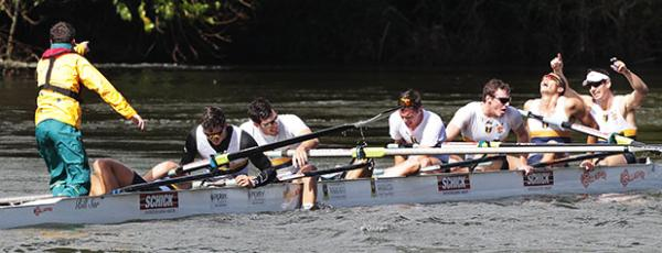 SYDNEY SUCCESS: The men's rowing eight from Sydney University celebrate their win in the Gallagher Great Race while the men from Waikato University settle for second in the background.