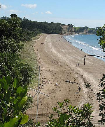 UPGRADE: Works at the North Shore's Long Bay Regional Park are part of the proposals.