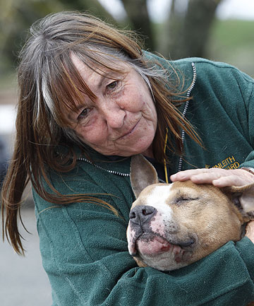 DOG FIGHT: Carolyn King and her American Staffordshire terrier, Jimbo.