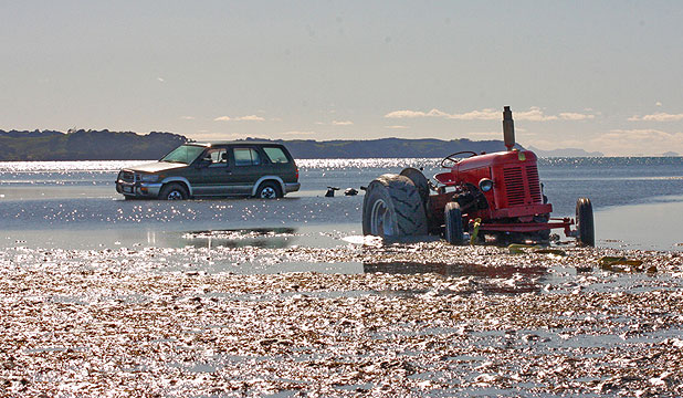BOTH BOGGED: Snells Beach residents are pondering how a  four-wheel-drive and tractor became stuck in the tide this morning.
