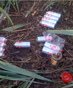 Butane cans scattered in a park indicate people huffing, which has killed a number of young people recently.