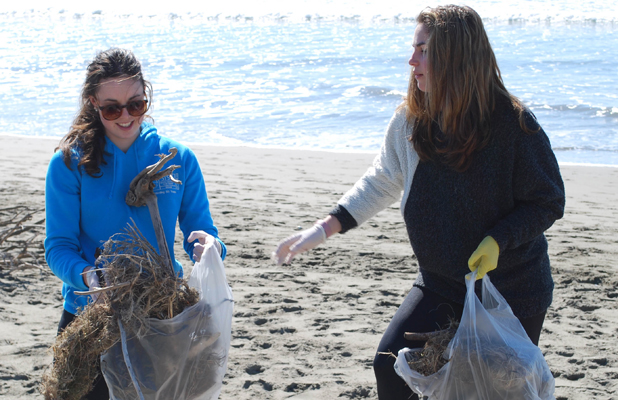 PITCHING IN: Samantha Swain, 17, right, and Maggie Worthington tidy up Waimairi Beach on Saturday as part of a volunteer project for The Concert.