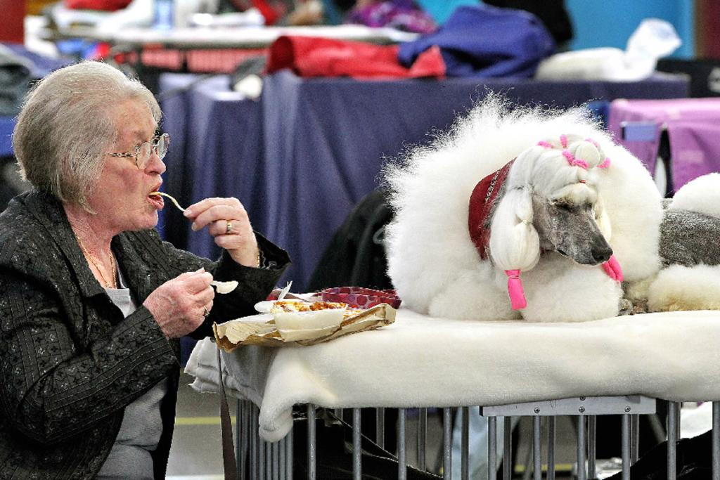 "Patricia Kwak from Gisborne has lunch with her Standard poodle bitch Lotti in her ""at home clothes""."