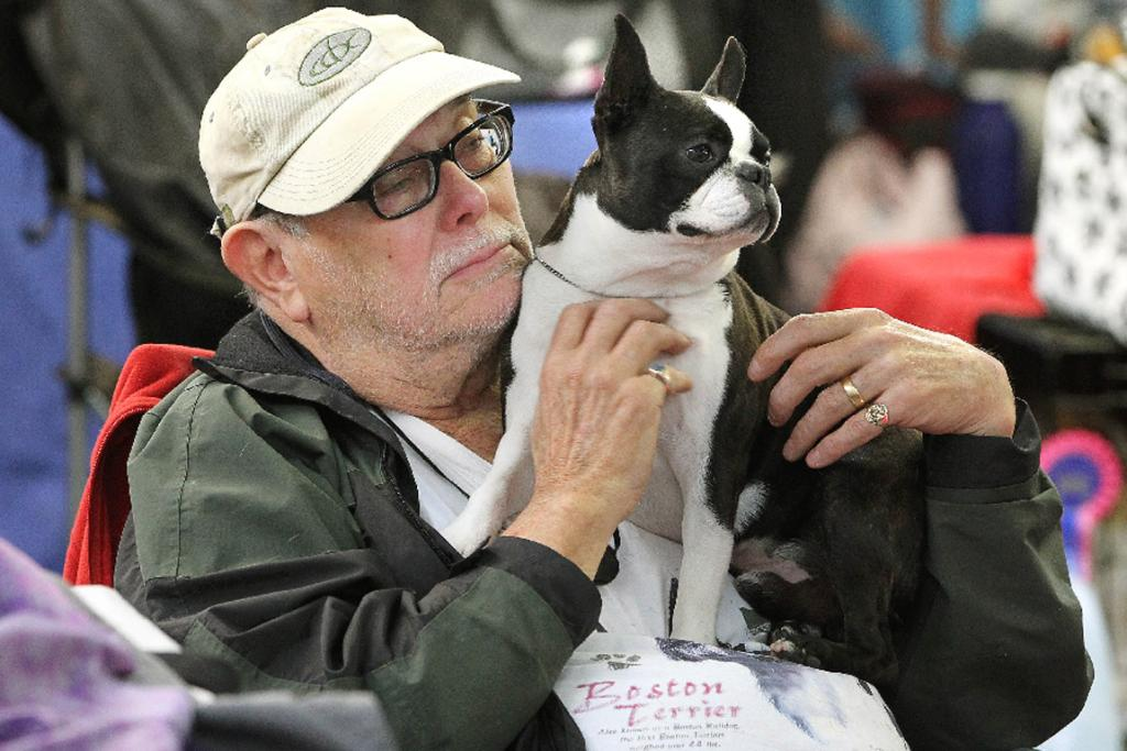 Phil Wallington from Wakawa Beach with his boston terrier Prince.