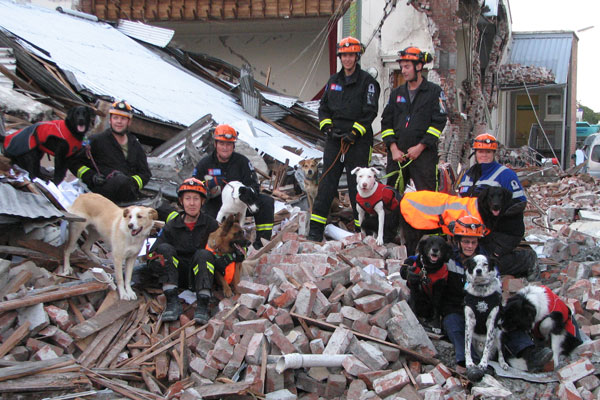 Tim Drennan, president of the USAR Search Dog Association and his sniffer dog Boo (standing right rear; white dog in red coat) and other team members pose in the rubble of the Feb 22 earthquake.