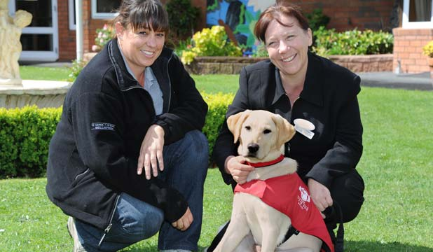 TEAM EFFORT: Trisha the guide dog with Selwyn Oaks Village manager Carol Andrews, right, and Nicola Cadogan from the Royal New Zealand Foundation of the Blind.