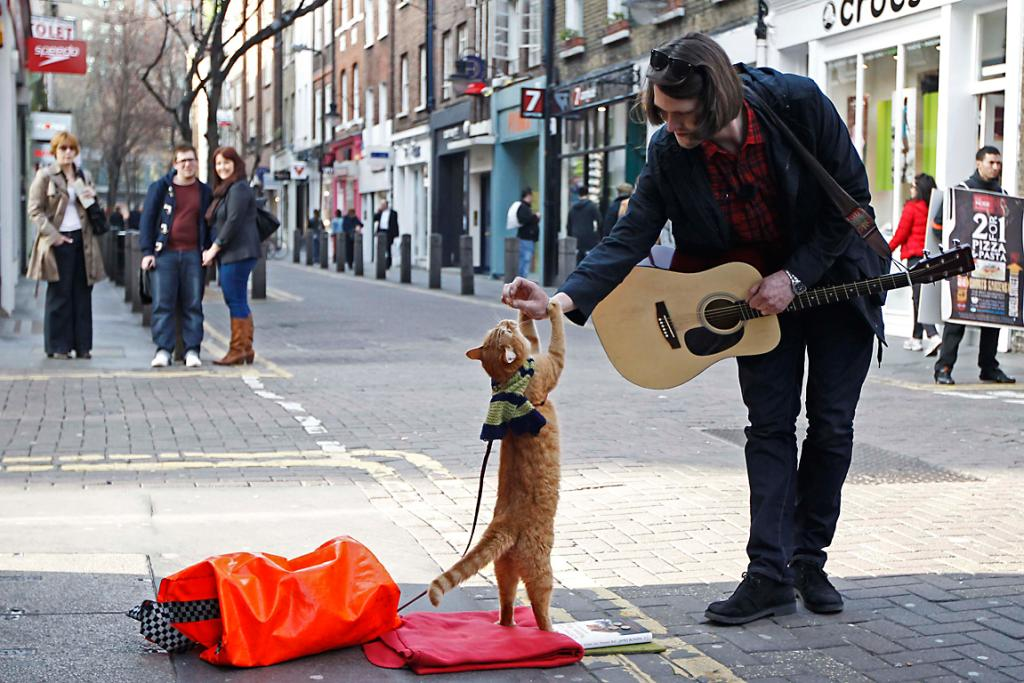 Street musician James Bowen busks with cat Bob in Covent Garden in London.