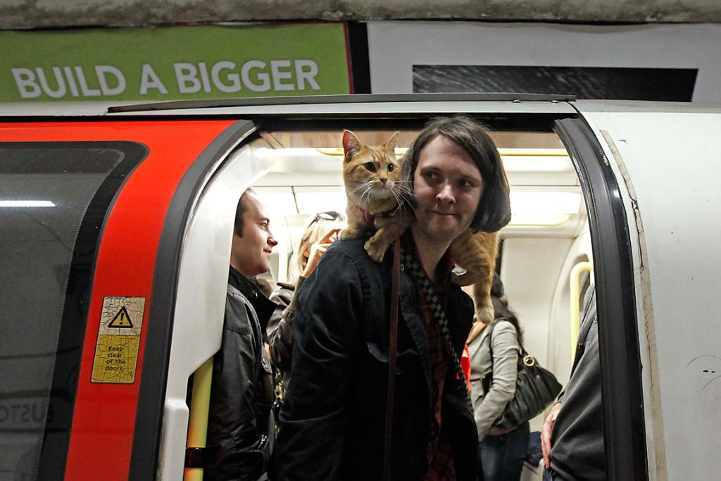 James Bowen travels with cat Bob on the underground in London. Bowen has written a book called A Street Cat Named Bob.