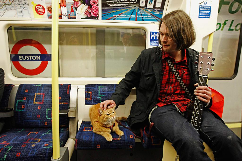 Bowen and cat Bob travel on the underground in London.